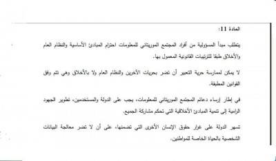 صورة من  المادة ١١ من قانون مجتمع المعلومات نشرها المدون والناشط سيدي محمد لمين على فيسبوك