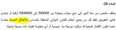 صورة من المادة ٢٨ من مشروع القانون المتعلق بالجرائم السيبرانية نشرها الناشط الحسن ولد سيدي الحين
