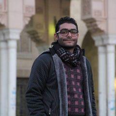صورة مصغرة لـ محمود سعيد موسى